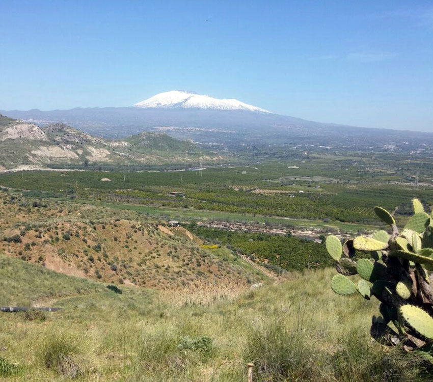Etna Excursion: Iblei